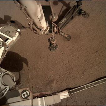 Стало известно, почему застрял бур марсохода InSight Космос